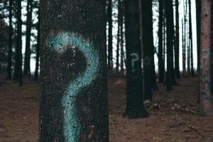 Perguntas que realmente importam